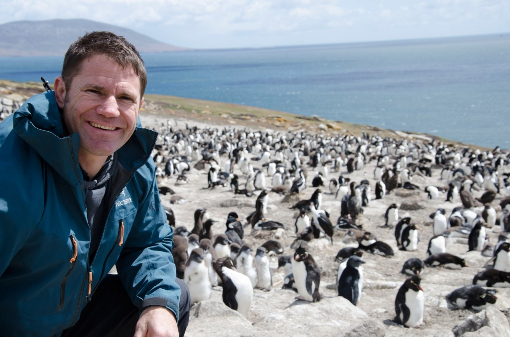 EPISODE 10 - WILD ISLANDS. Picture Shows: Steve Backshall filming at a rockhopper penguin colony in the Falkland Islands.